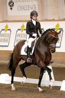 Gorklintgards_Quinto_Swede_Horse 2015